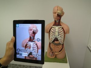 Augmented Reality Anatomy